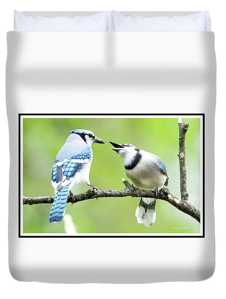 Blue Jay Parent Feeding Juvenile Duvet Cover
