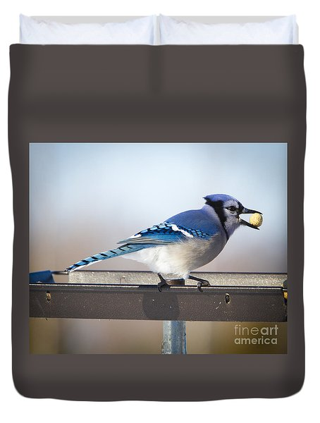 Blue Jay With A Mouth Full Duvet Cover
