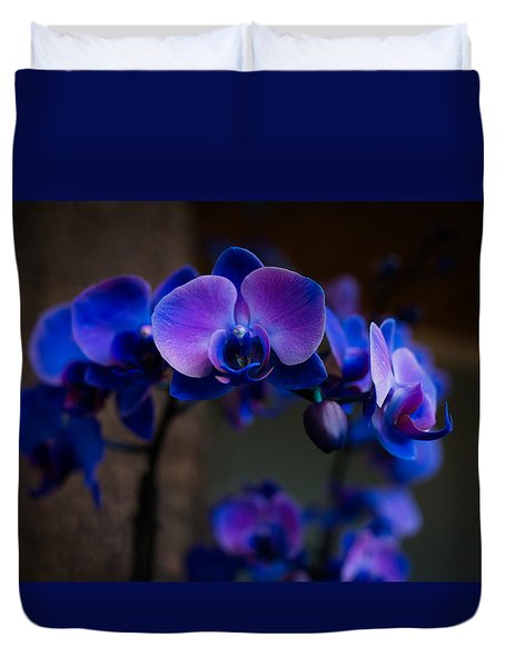 Blue Orchid Duvet Cover by Kathleen Scanlan