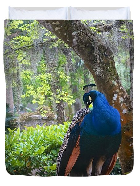 Duvet Cover featuring the photograph Blue Peacock  by Joan Reese
