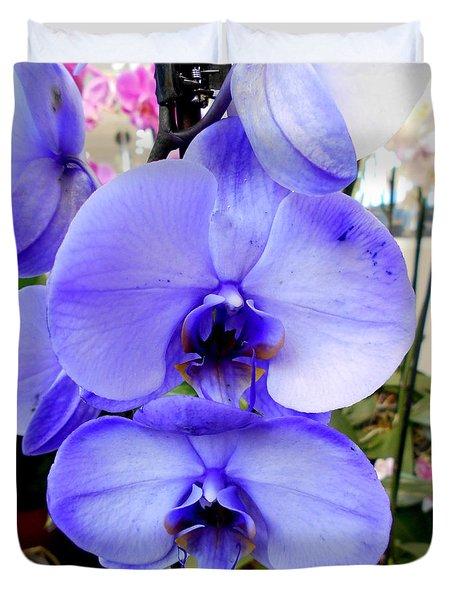 Blue Phalaenopsis Orchid Duvet Cover