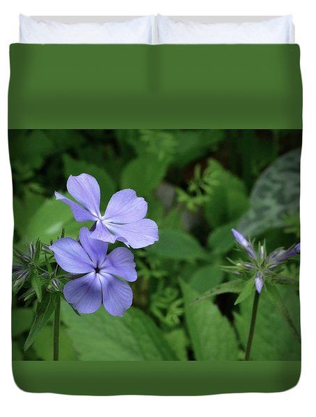 Blue Phlox Duvet Cover by Tim Good