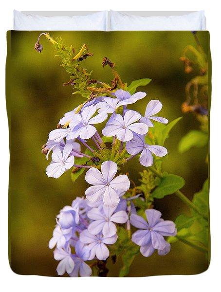 Blue Plumbago Flowers Duvet Cover
