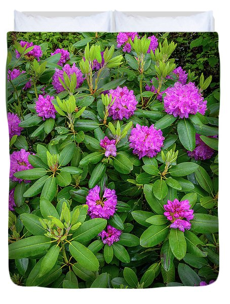 Blue Ridge Mountains Rhododendron Blooming Duvet Cover
