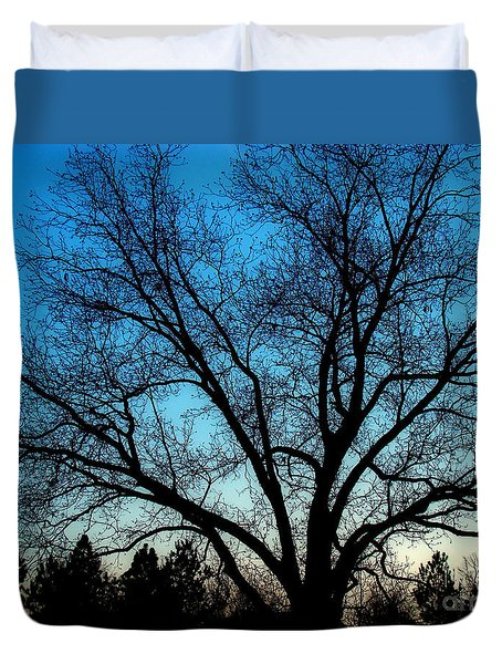Duvet Cover featuring the photograph Blue Sky At Night by Sue Melvin