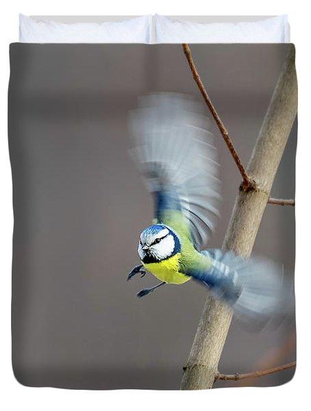 Blue Tit In Flight Duvet Cover