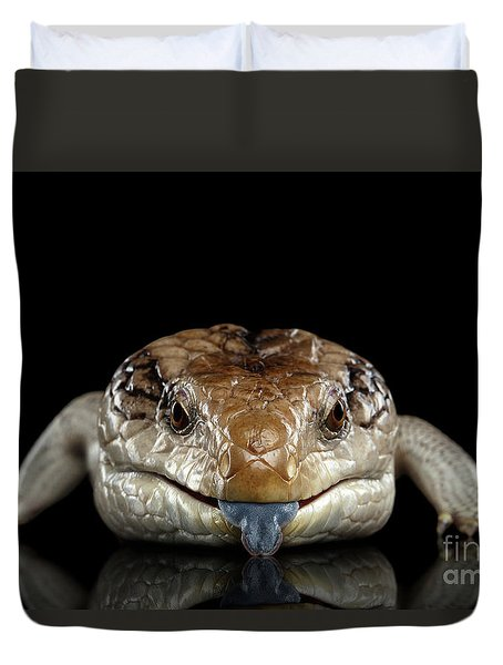 Blue-tongued Skink Duvet Cover by Sergey Taran