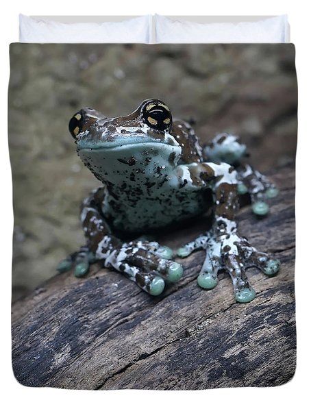 Blue Tree Frog Duvet Cover