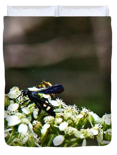 Blue Wasp 2 Duvet Cover by Douglas Barnett