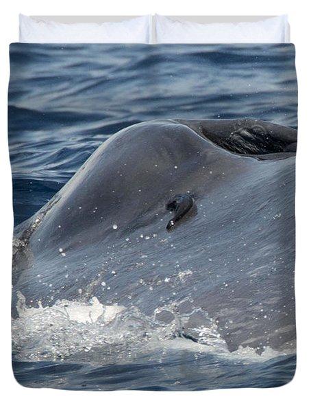 Blue Whale Head Duvet Cover