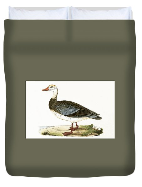 Blue Winged Goose Duvet Cover by English School