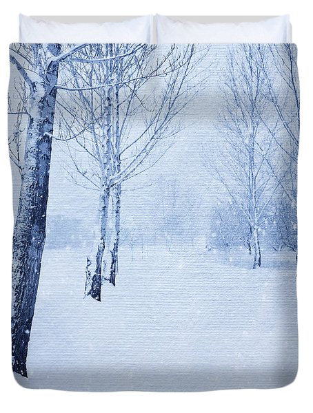 Blue Winter Path Duvet Cover