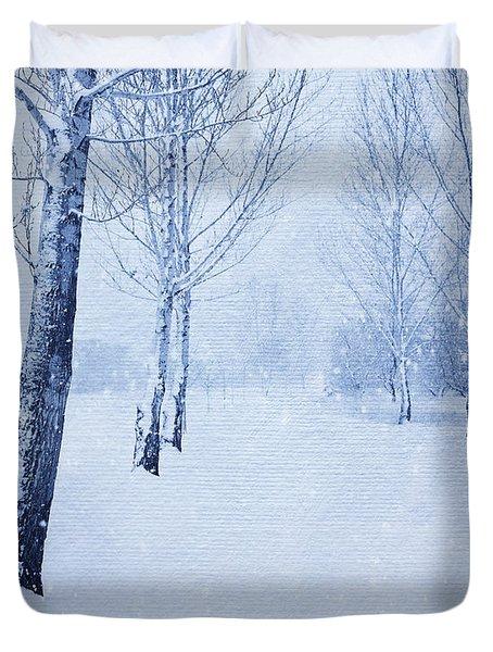 Blue Winter Path Duvet Cover by Theresa Tahara