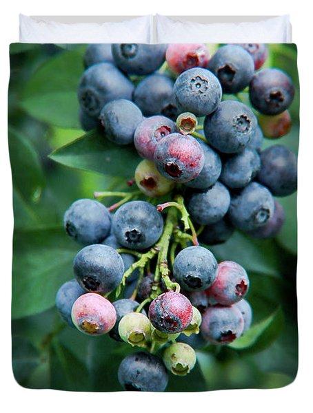 Blueberry Cluster Duvet Cover