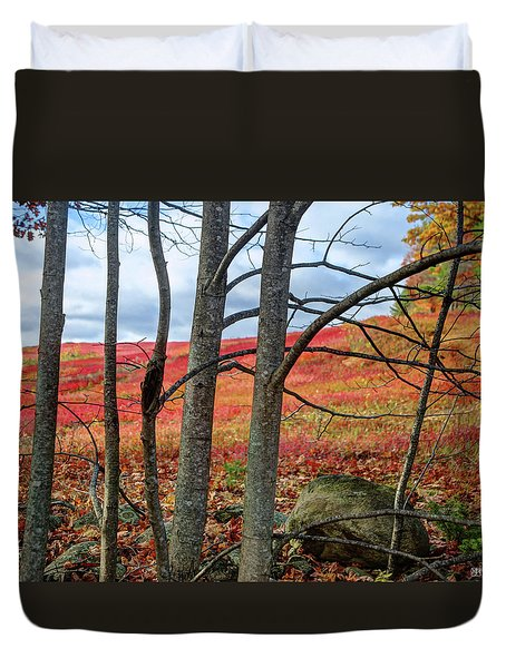 Blueberry Field Through The Wall - Cropped Duvet Cover