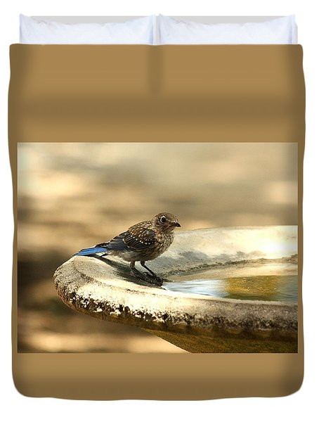 Duvet Cover featuring the photograph Bluebird Bath Time by Sheila Brown