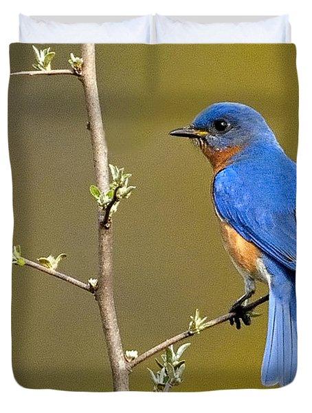 Bluebird Bliss Duvet Cover