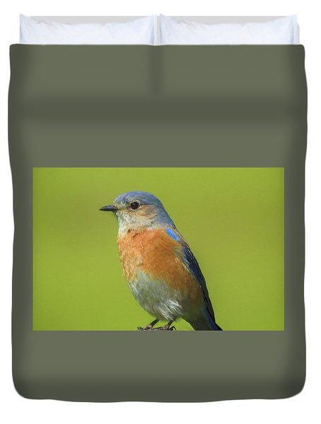 Bluebird Digital Art Duvet Cover