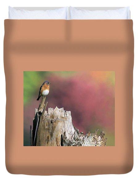 Bluebird Fall Perch Duvet Cover
