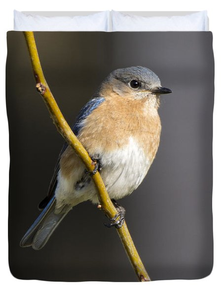 Bluebird Female Duvet Cover