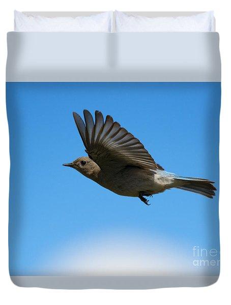 Bluebird Glide Duvet Cover by Mike Dawson