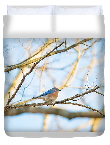 Bluebird In Tree Duvet Cover