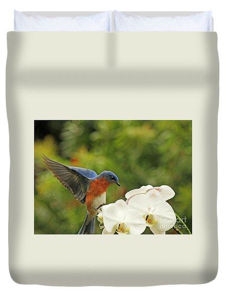 Bluebird Landing On Orchid Duvet Cover
