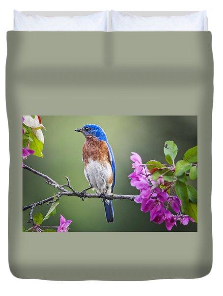 Bluebird On A Branch Duvet Cover