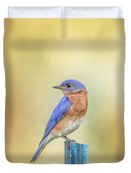 Bluebird On Blue Stick Duvet Cover by Robert Frederick