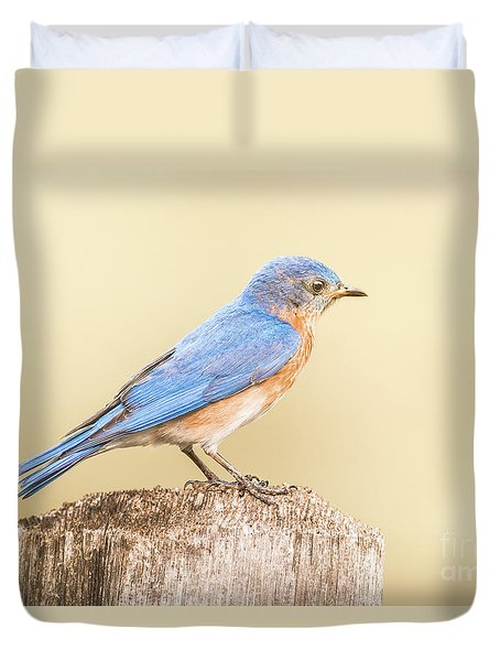 Duvet Cover featuring the photograph Bluebird On Fence Post by Robert Frederick