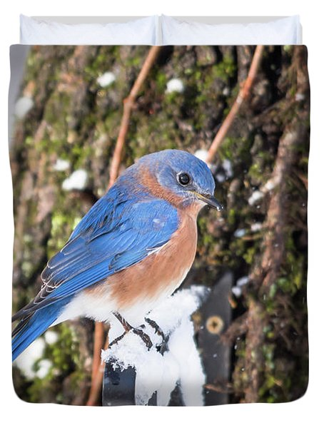 Bluebird Duvet Cover