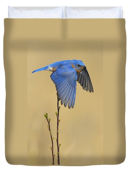 Bluebird Takes Flight Duvet Cover