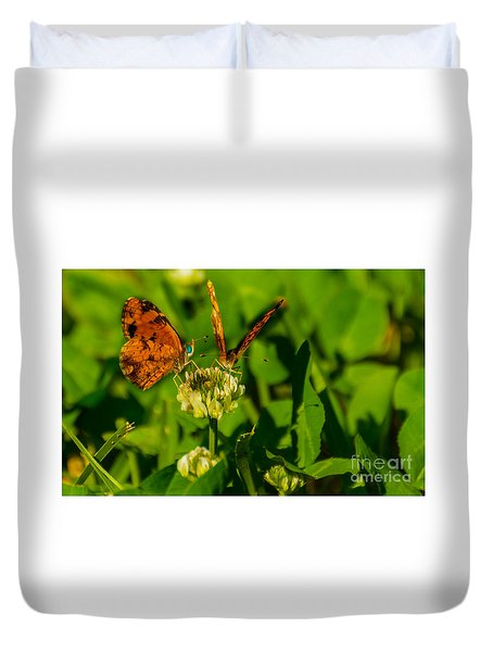 Bluehead Butterfly Duvet Cover