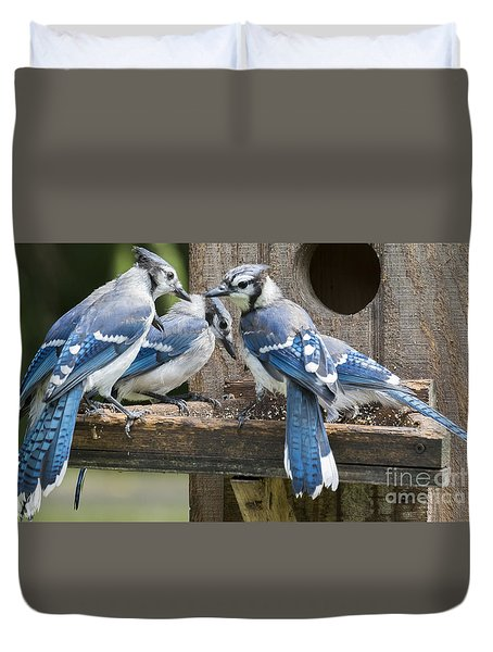 Duvet Cover featuring the photograph Bluejays Party  by Ricky L Jones