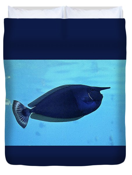 Bluespine Unicorn Fish Duvet Cover