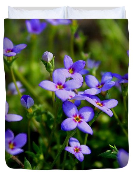 Duvet Cover featuring the photograph Bluets by Kathryn Meyer