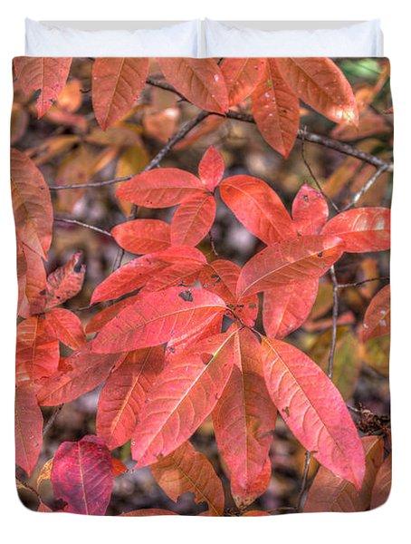 Blush Of Color Duvet Cover