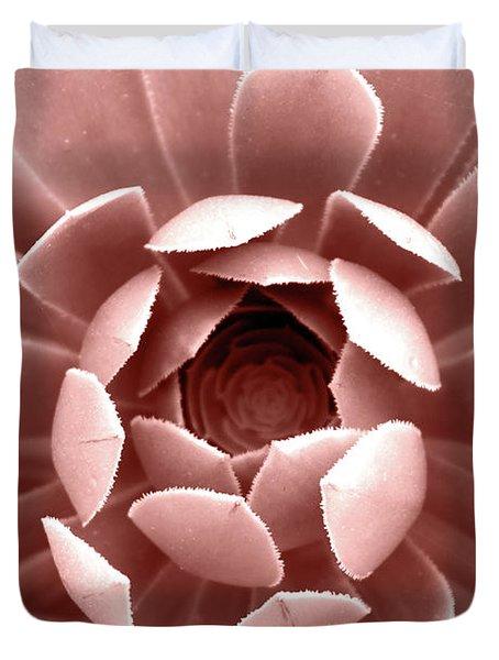Blush Pink Succulent Plant, Cactus Close Up Duvet Cover