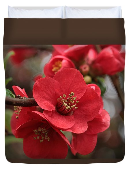 Blushing Blooms Duvet Cover