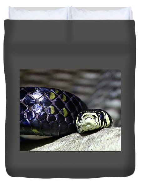 Boa Duvet Cover by Brent Sisson