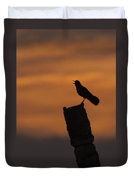 Boat-tailed Grackle At Sunset Duvet Cover