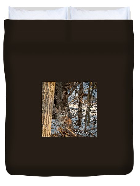 Duvet Cover featuring the photograph Bobcat by Brenda Jacobs