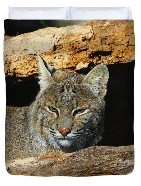 Bobcat Hiding In A Log Duvet Cover