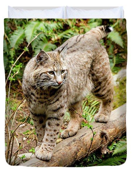 Bobcat In Forest Duvet Cover