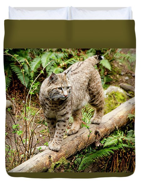 Bobcat In Forest Duvet Cover