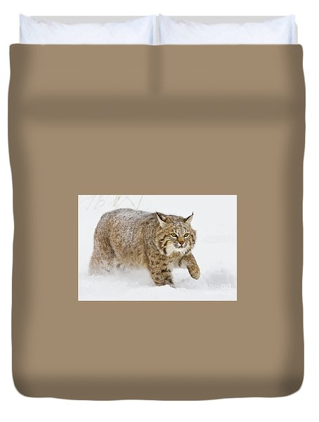 Bobcat In Snow Duvet Cover