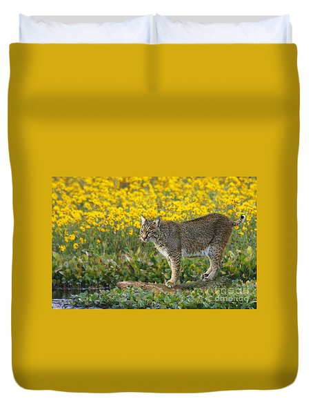 Bobcat In The Swamp Duvet Cover