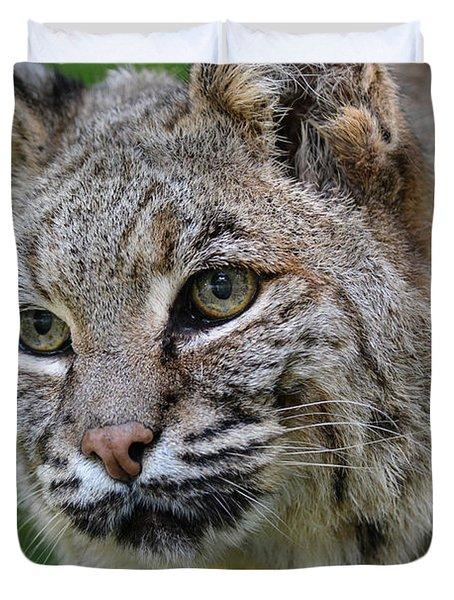 Bobcat In The Trees Duvet Cover