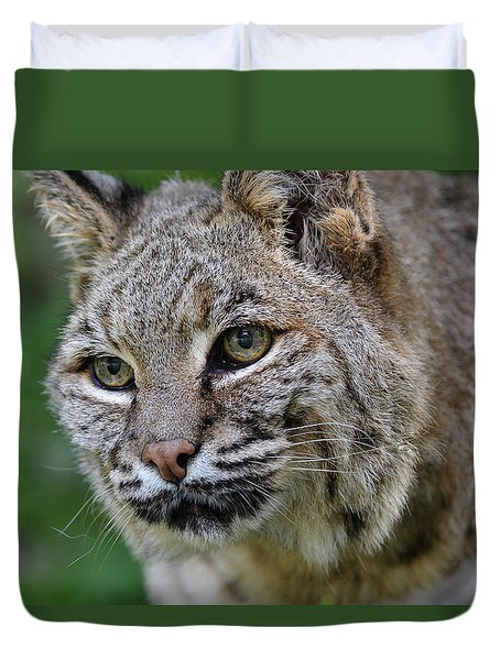 Bobcat In The Trees Duvet Cover