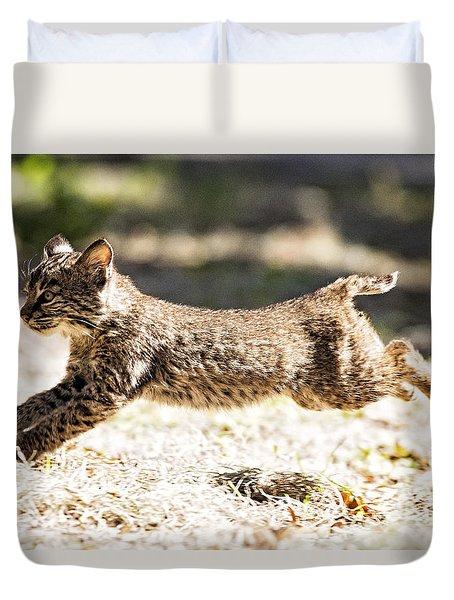 Bobcat Kitten On The Run Duvet Cover